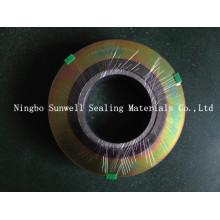 Sunwell ASME Spiral Wound Gasket Ss316, CS