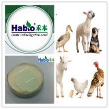 enzima composta, enzima da mistura, alimentação das aves domésticas