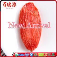Nouvelle arrivée en vrac goji baie récolte wolfberry exportation qualité faible teneur en calories