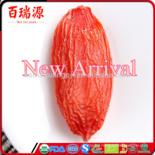 New Arrival Bulk goji berry harvest wolfberry export quality low calories