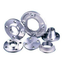 Stainless Steel Pipe Flange Forging Flange