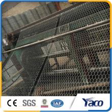 Gaiola de galinha 2016 nova da rede de fio do tipo para a venda