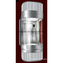 Ascenseur panoramique avec cheveux en acier inoxydable (JQ-A006)