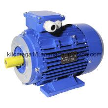 Y2-Serie 3-Phasen-Asynchron-Elektromotoren für die Industrie 0,75 kW-280 kW