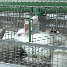 rabbit cage for sale((female and baby rabbits/commercial rabbits)