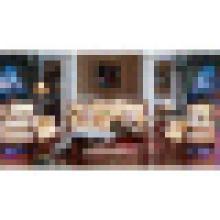 Meubles de salon avec ensemble de sofa en cuir en bois (508)