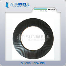 Corrugated with 316L Graphite Gasket Cmg (SUNWELL)