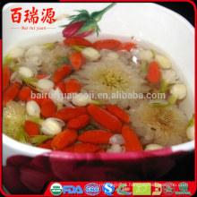 Goji plant goji berries calorias goji bagas saúde
