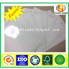 60g Silicone Release Paper-for Adhesive Paper