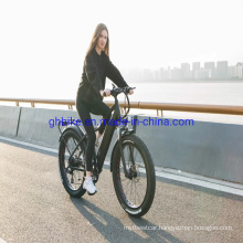 Lithium Battery Bafang Motor 750W 1000W 48V Fat Tire Mountain Bike Electric Bicycle