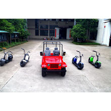 2016 Сделано в Китае Цена фабрики 200cc Взрослые участвуя в гонке идти картинг для сбывания (JYATV-020)