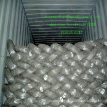 Galvanized Wire/Galvanized Iron Wire/Galvanized Steel Wire