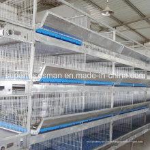 Tipos de H automático de alta calidad galvanizado capa de acero jaula de aves de corral