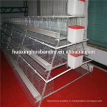 Caisse de batterie pvc ou galvanisée pour poulets avec système automatique complet