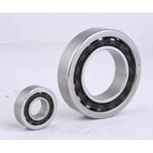 Rolamento de esferas de contato angular de aço inoxidável (SS7000, SS7200, SS7300)