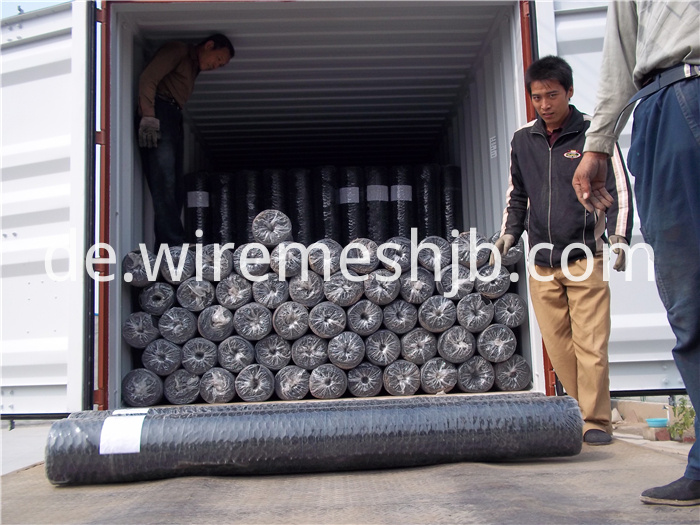 Galvanized Hexagonal Wire Mesh