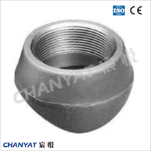 ASME, DIN, JIS, Mss, GOST Stainless Steel Branch Outlet Fittings