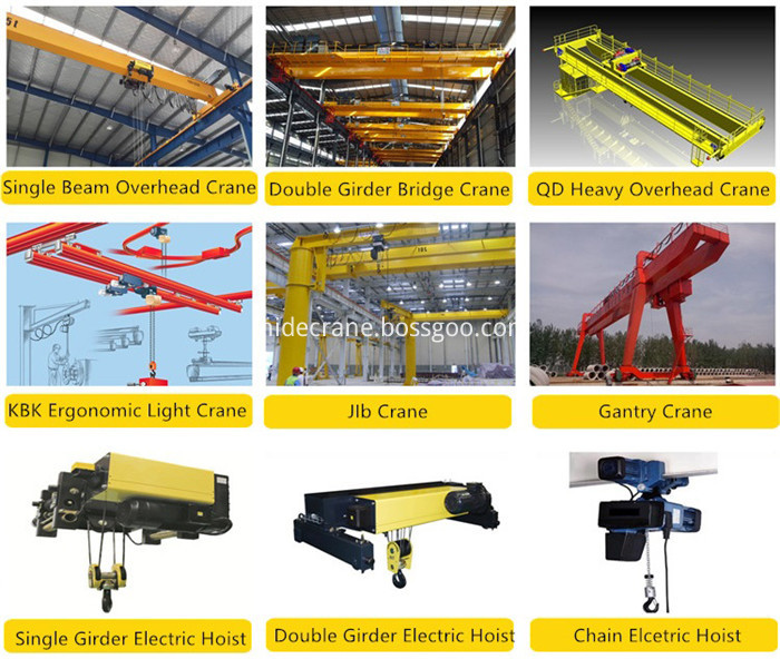 Double Girder New Type Overhead Crane 5
