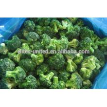 Brócolis frescos congelados