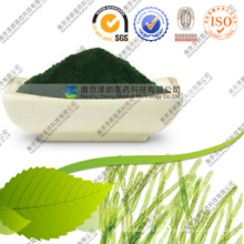 Alimentation Chlorella Nutrition Chlorella Avantages