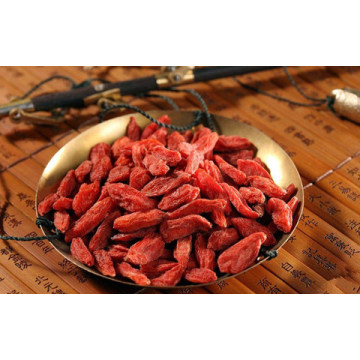 Dried Goji Berry Fruit