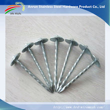 Stainless Steel Roofing Nails with Plastic Washer