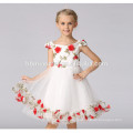 -Latest western design sleeveless princess girl dress 2017 baby girls party dress design for party wear