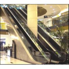Aksen Escalator Indoor & Outer Door Type