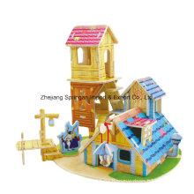 Wood Collectibles Spielzeug für Heimwerker-Wissenshaus