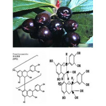 Натуральный черный порошок из экстракта черноплодной ряды Антоцианин 5% -70% 4: 1, 10: 1 CAS: 18466-51-8