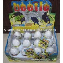 Growing Hatching Beetle Egg Toy
