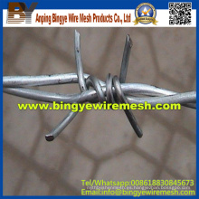 Alambre de púas de acero inoxidable / alambre de púas baratos (fábrica)