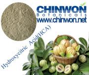 Top Level Garcinia Combogia Extract Hydroxycitric Acid 50%