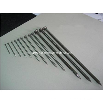 Brght Common Nails, Q235