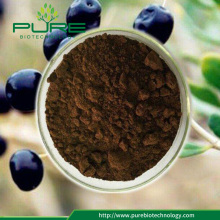 Black goji berries extract powder