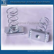 China-Hersteller-Qualitäts-Kanal-Frühlings-Nuss