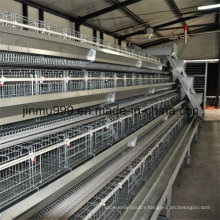 Steel Frame Chicken Poultry Equipment Cage for Chicken