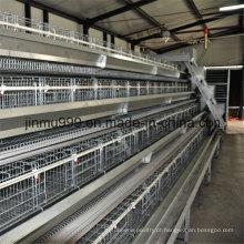 Gaiola do equipamento das aves domésticas da galinha da armação de aço para a galinha