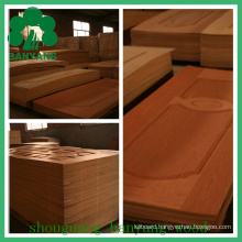 Ash/Teak/Sapeli/Oak HDF/MDF Moulded Veneer Door Skin