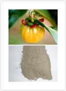 High Quality Garcinia Cambogia Extract