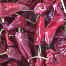 Yidu Chilli for Seasoning and Spices