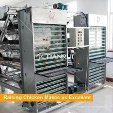 Machine automatique de collecte d'oeufs de conception de Tianrui pour l'équipement d'élevage