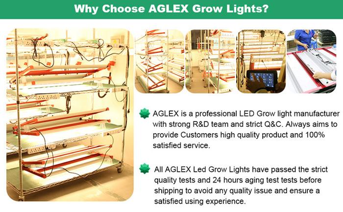 aglex led grow light