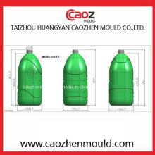Einzigartiger Entwurfs-Plastikhaustier-Flaschen-blasende Form in China