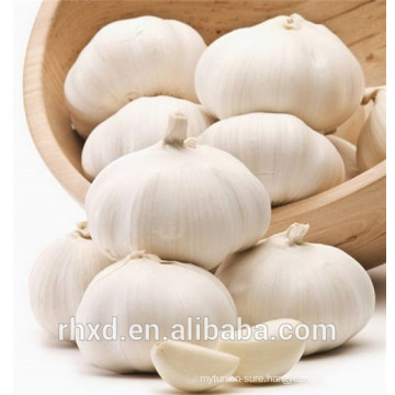2018 new crop fresh garlic ajo