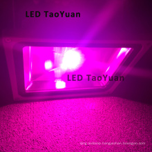 High Power LED Grow Light 380-840nm 50W LED Plant Lamp