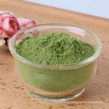 Hot selling 100% natural Green Coriander Powder