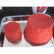 Pâte à la tomate avec Brix: 22-24% / 28-30% Emballage en 70g, 800g, 3000g, 4500g (HACCP, ISO, BRC, FDA)