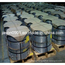 Steel Wire, Stainless Steel Wire, Spring Wire