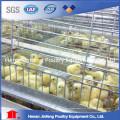 Gaiola automática limpa fácil de alta qualidade da galinha